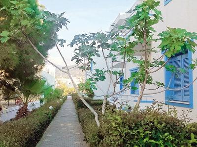 Hotel Amazones Villas Apartments 9881//.jpg
