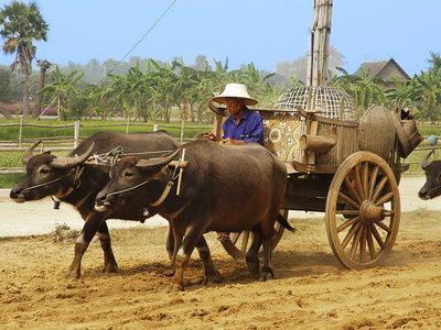 Große Thailand Rundreise - privat geführt