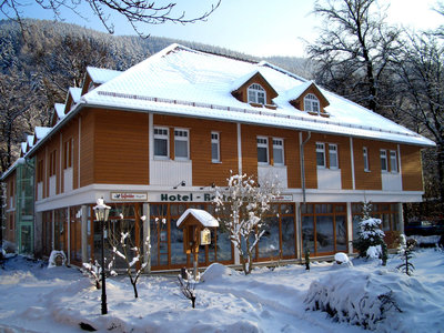 Kurpark-FLAIR-Hotel Im Ilsetal