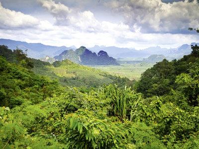 Südthailand hautnah