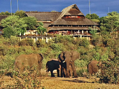Hotel Victoria Falls Safari Lodge 9881//.jpg