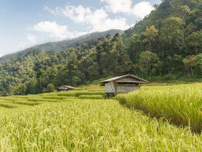Die Schätze Thailands