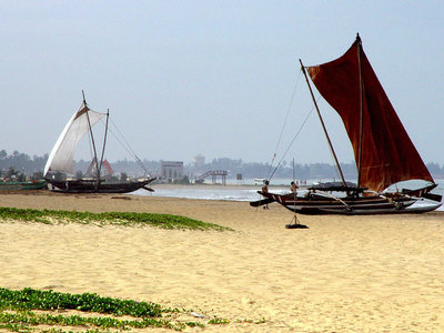Sri Lanka kompakt Angebot aufrufen